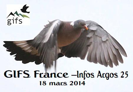 boletin de migracion de paloma torcaz Argos 25
