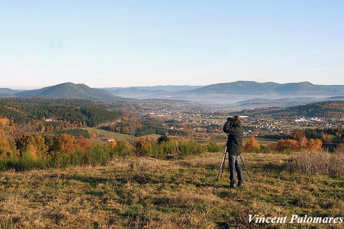 observatorio de migracion de torcaces en los pirineos
