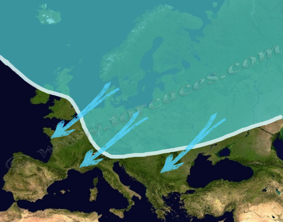 el mapa de migracion de la paloma torcaz