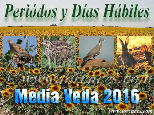 Torcacescom Almacen De Noticias Periodos Y Dias Habiles De La